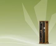 Válasszon a beltérhez illő fa borítású Technosafe TCE L fegyverszekrényt!